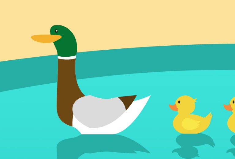 It turns out you shouldn't feed bread to ducks