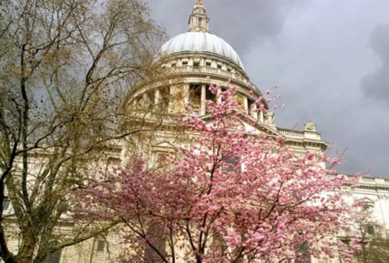 Review: Afternoon Tea at St. Paul's Cathedral